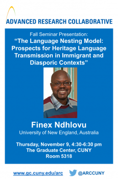 "Commentary on Finex Ndhlovu's ""The Language Nesting Model"" by Matthew Glenn Stuck"